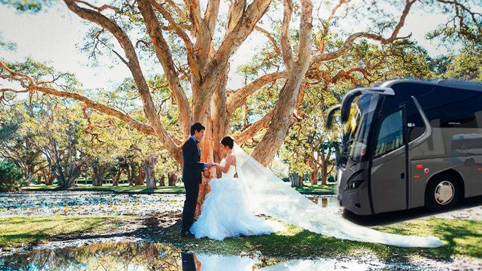 alquiler autobuses para bodas en malaga